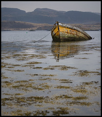 I am not a victim, I am beautiful (steverichard) Tags: travel sea orange water yellow photography scotland boat wooden paint image decay argyll vessel coastal oban loch sunken westcoast sinking ardfern steverichard ouratalanta