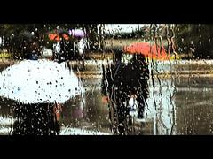 RAINY DAYS (Elena Fedeli) Tags: people italy rain photoshop buildings xprocess italia crossprocess sharp 169 pioggia autobus puglia bari palazzi apulia contrasto fromthebus cinemascope navetta higlysaturated stationstazione attraversoilfinestrino piazzaaldomoro stphotographia canong10 stazionecentraledibari acrossawidow