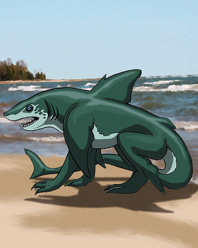 Wereshark Form