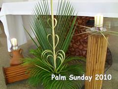 PalmS37
