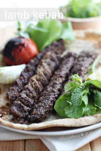 middle east & south asian culinary adventure : kebab