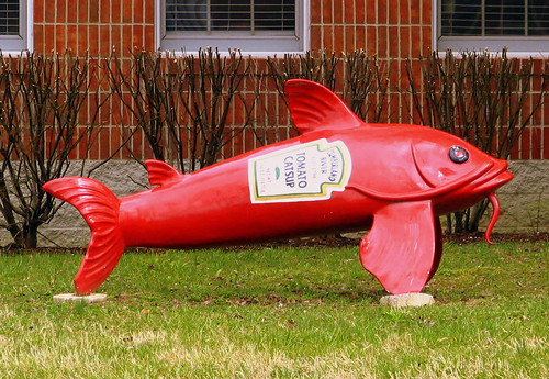 Catsupfish
