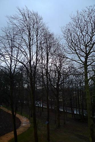 Ranmoor window view 2