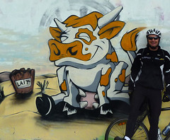 Cow Graffiti (will_cyclist) Tags: graffiti cycling cows geneva cowsx