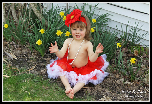 Clapping for daffodils