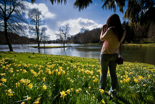 A daffodil strewn meadow/lawn in front of a lake, a woman stands to one side holding a camera to her eyes, framing her own shot