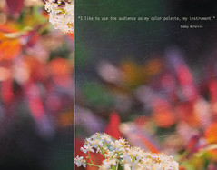 instrumental (Rootedinstyle) Tags: color spring diptych quotes dip richcolors backgroundfocalpoint havingfunwithmyimages soocexceptcropandtexture happysignsofspring