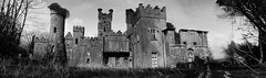 Castle Quarry Panorama (Kieran McCarthy) Tags: castle gargoyle youghal