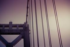 My dreams go on forever (KayVee.INC) Tags: sf sanfrancisco california ca bridge usa bay baybridge 2010 cavey kayvee kayveeinc twittographers