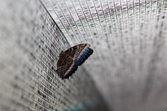 baudchon-baluchon-mindo-papillons-47