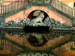 Parque del Capricho (estebanatienza) Tags: madrid spain arquitectura pueblo bonito lagos escultura antigua embarcadero estanque jardines antiguo reflejos antiguedades colorido parquedelcapricho pueblosdeespaña monumentoshistoricosylugaresdeinteresdeespaña