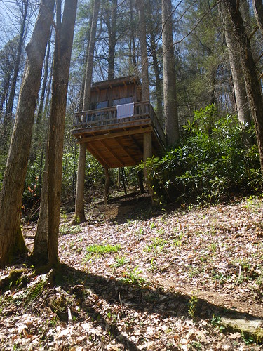Treehouse @ Kincora Hostel