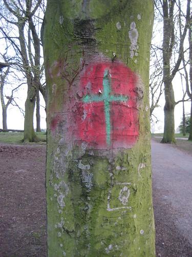 religous tree