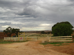 Drovers Run, Front Gate, Kingsford (baytram366) Tags: signs television hotel farm country truckstop hairdresser channel9 southaustralia kingsford freeling gawler filminglocations mcleodsdaughters droversrun gungellan