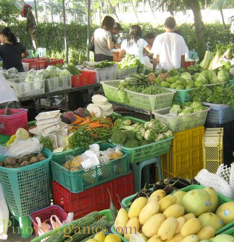 AAV Market-BSU veggies