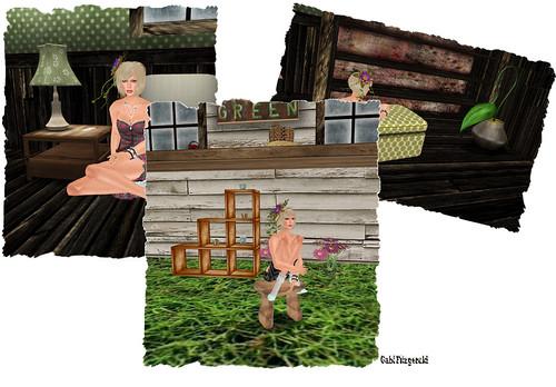home & garden 1
