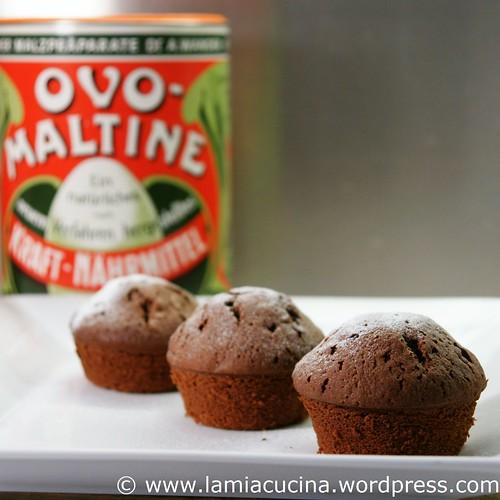 Ovo-Muffins 0_2010 05 02_6655