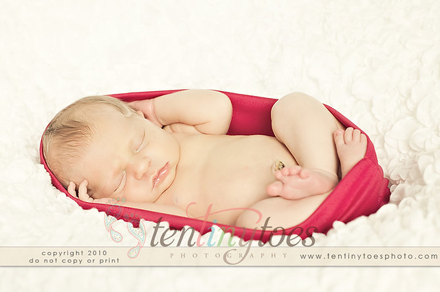 pink newborn photography prop