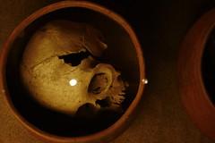 Un cráneo y dos puntos de luz