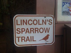 Lincolns Sparrow Trial Sign