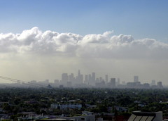 Downtown LA from Sunset Blvd. (Mark Luethi) Tags: skyline smog losangeles downtownla sunsetblvd laskyline