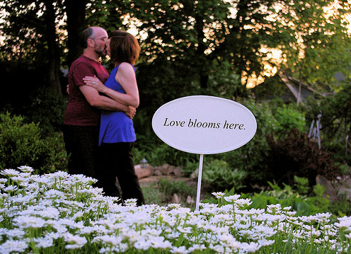 Love Blooms Here by Nicola