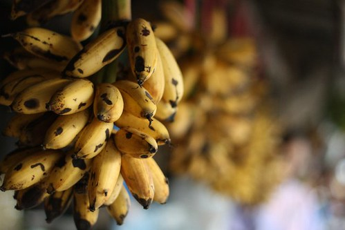 Tiny bananas, Tagaytay, Philippines