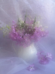 The Illusiveness (panga_ua) Tags: flowers stilllife floral beauty canon petals softness ukraine fantasia ethereal mysterious romantic elusive bouquet ideal waterdrops tabletop naturemorte morningmist lilyofthevalley primroses rivne naturamorta naturaleffects purplishblue bodegones illusive masterphotos dreamillusive theillusiveness nataliepanga