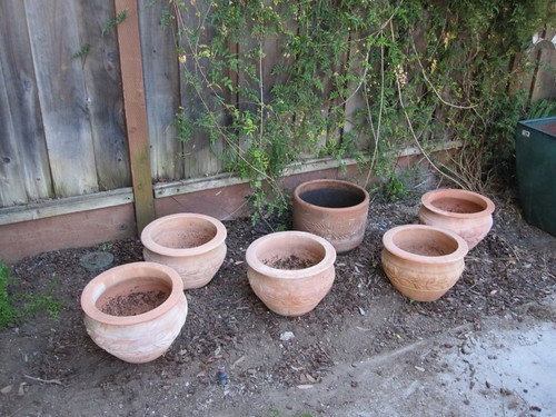 Pots for herbs
