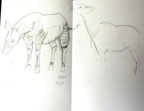 sketch06_c