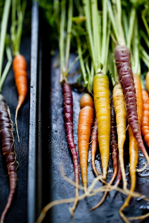 Vegetable Rainbow