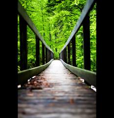 the bridge (Oliver DeClap) Tags: landscape sterreich landschaft wewantmore salzkammergut jampacked hallstatt canoneos5dmkii