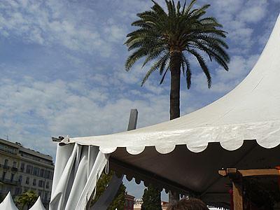tentes et palmier à Nice.jpg