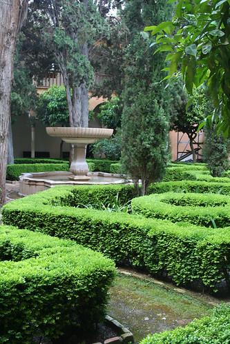 Dianas- Spain 2010 484