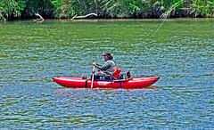 gone fishin' (champbass2) Tags: california fish water northerncalifornia river fishing nikon paddle current pontoonboat sacramentoriver gonefishing sigma500mm nikond90 champbass2 davescadden northforkoutdoors