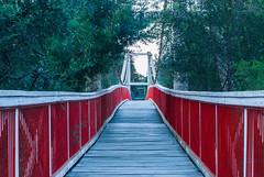Kanes Bridge (Scottmh) Tags: park bridge red house kew reflections river 50mm boat nikon long exposure slow suspension bend dusk australia melbourne victoria swing shutter yarra boathouse kanes d60 studley waterlights f14g