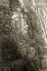 Kohunlich 006 Quintana Roo (duque molguero) Tags: blackandwhite bw art blancoynegro mxico architecture landscape mexico temple arquitectura ancient rainforest ruins king arte maya selva paisaje bn tumba mayanruins jungle ruinas scanned rey civilization duotone archeology templo reyes clasico campeche piramide prehispanic arqueologia trono jungla kohunlich kukulkan duotono mayab arqueologica prehispanico bajorrelieve civilizacin estelas mundomaya glifo glifos riobec templodelasmscaras