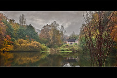 The Stephan Langton (Johan J.Ingles-Le Nobel) Tags: autumn trees england orange lake reflection tree fall yellow pub foliage dorking stephan northdowns langton abinger the smca waterylane stephanlangton tillingbournevalley abingerwoods johanjingleslenobel