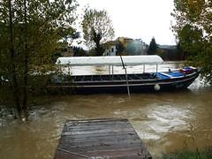 Inondazione Padova 2 novembre 2010 (Io sono mia) Tags: water river flood fiume alluvione acqua piena fiumi inondazione