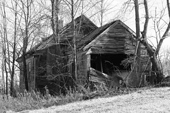 Broken House 2 (Ben DeFlorio) Tags: trees abandoned overgrown monochrome field blackwhite vermont sharon vt pomfret brokenhouse canong9