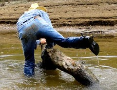 16 WS Think'g should ride this slimy log further (Wrangswet) Tags: wranglers swimmingfullyclothed wetjeans wetmen wetboots wetladz wetcowboy swimminginjeans wetcowboyboots wetcowboyhat wetwranglerjeans meninwetjeans guysswimminginjeans