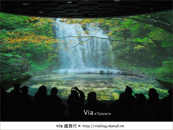 【花博夢想館】via遊花博(下)~新生三館:花博夢想館及未來館、天使生活館17