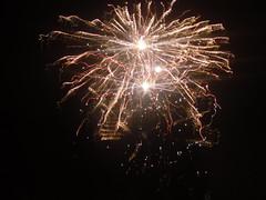 fireworks2010 011 (butterflies elbow) Tags: fireworks2010