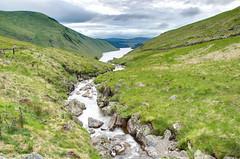 Racing to the reservoir (Rob McC) Tags: reservoir loch lake stream brook burn mountains hills tallah landscape rugged arid scottishborders