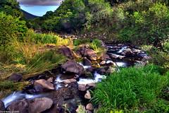 Iao Park Stream Flow (Buhler's World) Tags: world landscape hawaii stream maui hdr3shot buhlers crayok