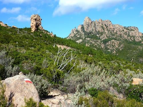 Arrivée au GR 20 avec vue sur le mamelon rocheux et la Punta Balardia