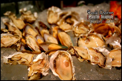 rockoysters