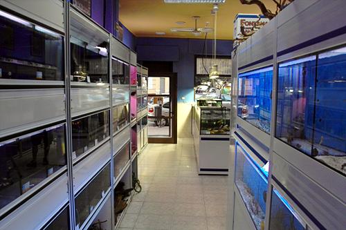 aquariium-store-valencia