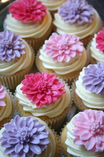 Chrysanthmums Cupcakes