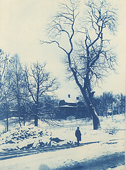 Villa Ekeliden, Djursholm, Uppland, Sweden (Swedish National Heritage Board) Tags: trees winter snow villa cyanotype riksantikvarieämbetet theswedishnationalheritageboard